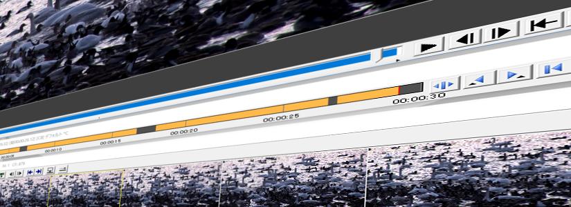 AviUtlを使用したTSのエンコードを楽にする方法